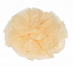 Rózsa dísz - Halványbarack
